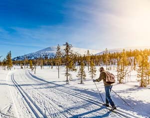 Ski-Langläufer unterwegs in Lappland