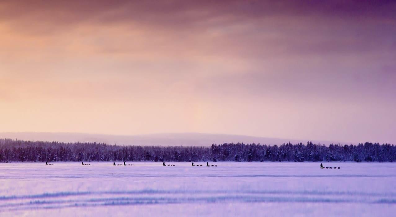Hundeschlittenfahrt in Schweden